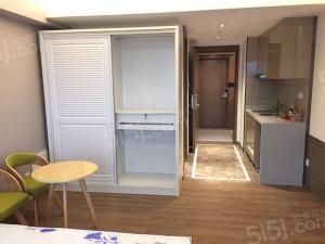 合景12期 平层公寓 开发商统装 家具家电齐全