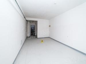 太湖悦溪毛坯一室一厅 采光优越 南北通透户型